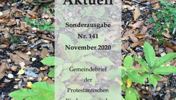 Bildschirmfoto 2020-11-13 um 21.23.37