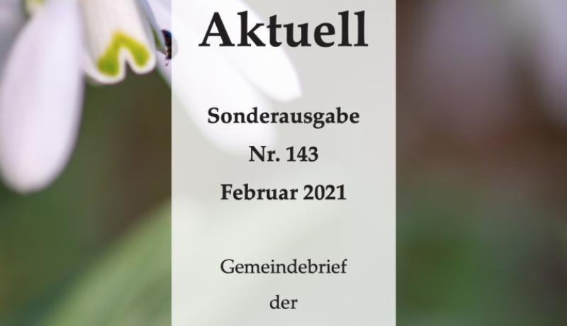 Bildschirmfoto 2021-01-30 um 00.57.56