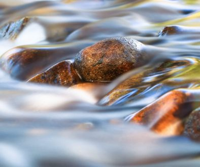 Long Exposure of a Small Stream